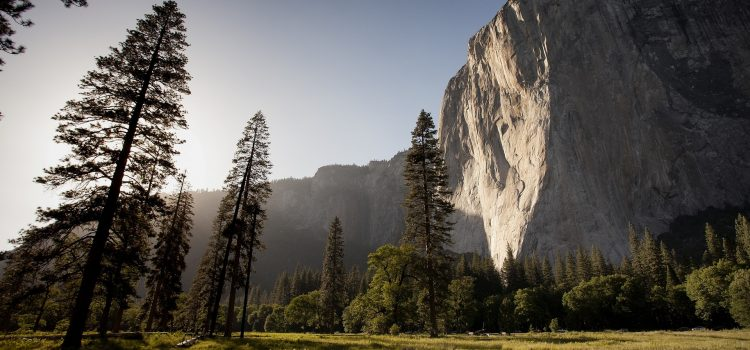 Yosemite-CCE LaRiviere